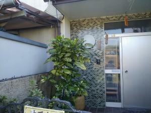 Photo_19-11-25-10-02-52.006